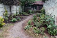 le jardin en juillet 2018