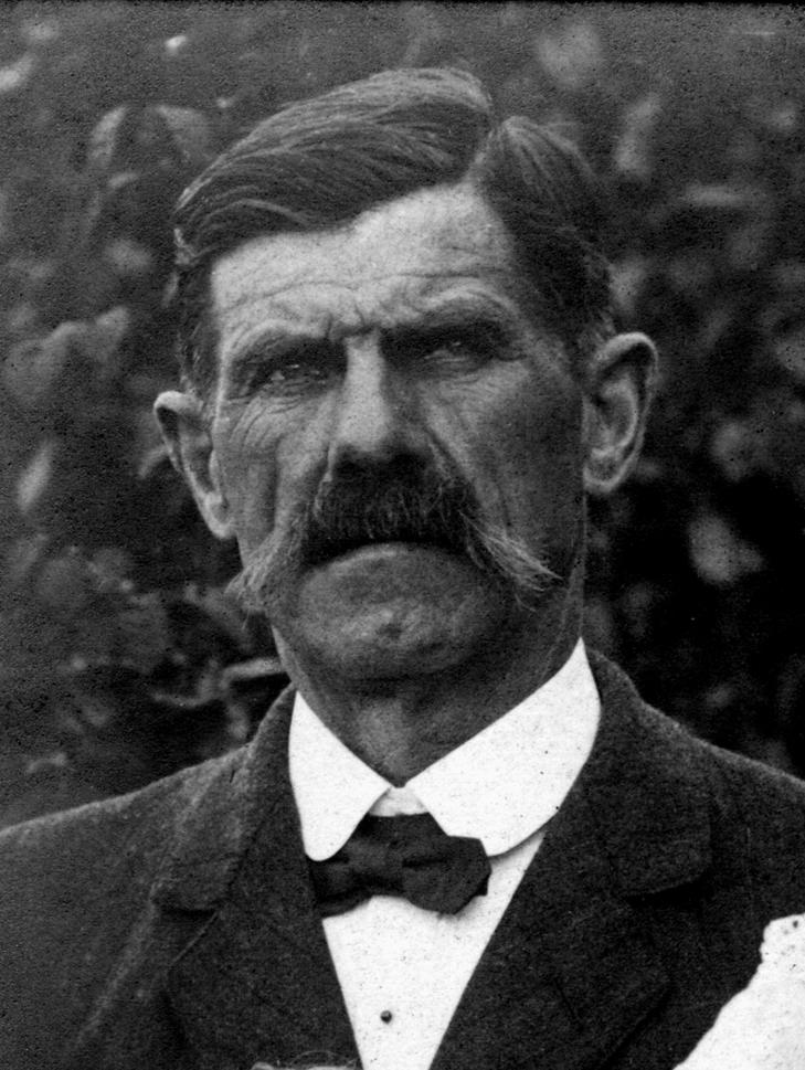 Ernest savartwb