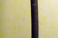 pfiche229 (1)